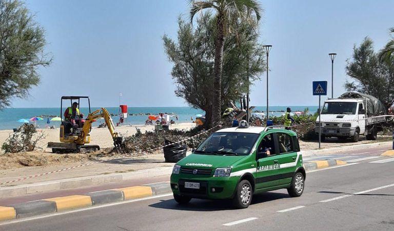 Montesilvano, pineta interdetta per il Jova Beach Party: fioriere al posto delle siepi rimosse