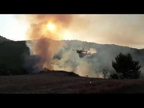 Fiamme anche a Castilenti, a fuoco dieci ettari tra bosco e sterpaglie FOTO VIDEO