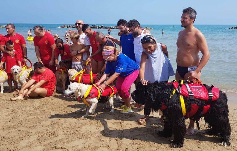 Pescara, esercitazione di salvataggio in mare con i cani del Sea Rescue Dog