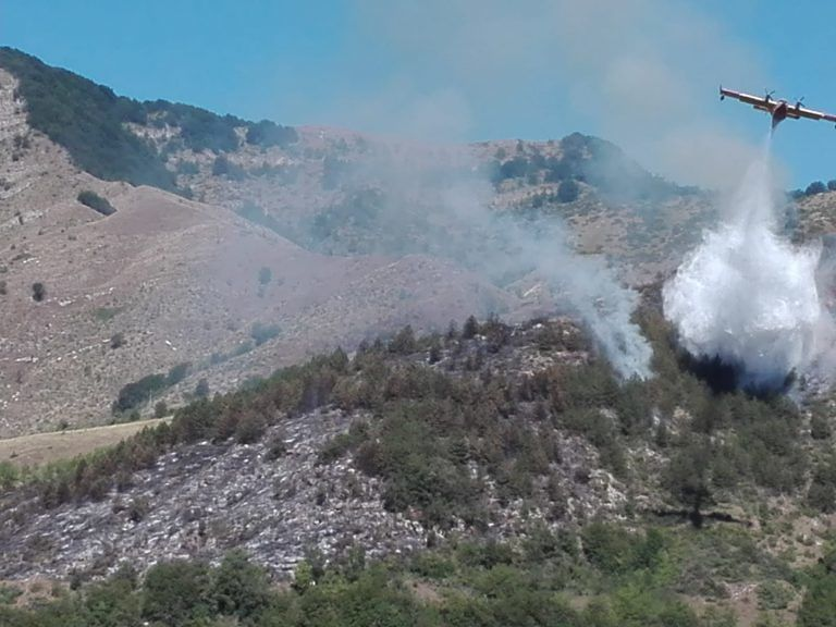 Emergenza incendi, fiamme anche a Macchia da Sole. Sotto controllo il rogo a Castilenti FOTO