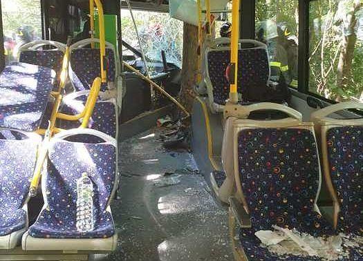 Incidente autobus a Caprara: la Tua apre un servizio speciale per i risarcimenti