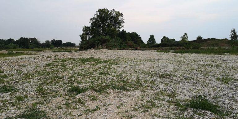 Roseto, finite le risorse: niente gabbionate sul fiume Tordino a ridosso di un'azienda vivaista FOTO