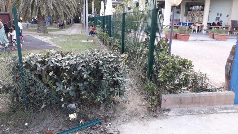 Giulianova, 'nuovo ingresso' al Parco degli Eucalipti FOTO
