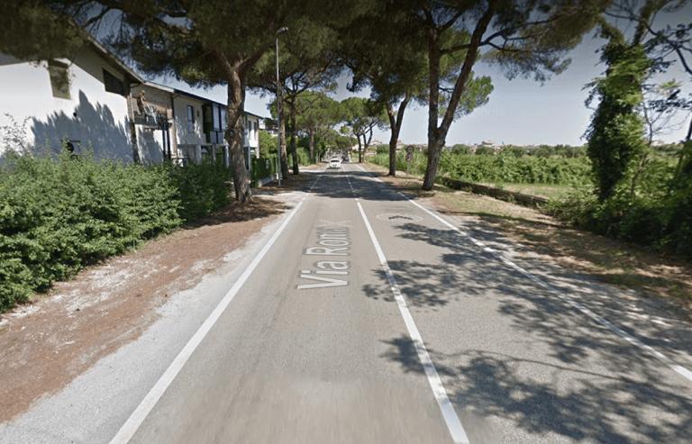 Martinsicuro, pini via Roma: incarico per verificare la stabilità