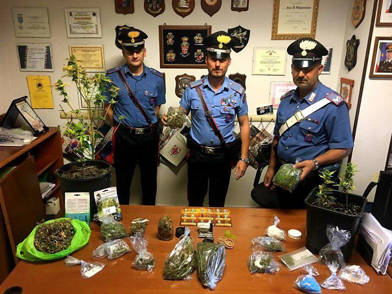 Notaresco, fratelli dal pollice verde coltivavano marijuana in casa: la scoperta FOTO