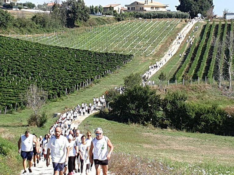 Sant'Egidio, passeggiata ecologica e giornata dello sport: eventi riusciti