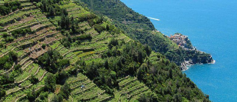 Giro d'Italia enogastronomico: Liguria