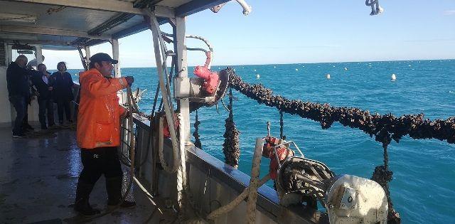 Costa dei trabocchi: torna la manifestazione 'Le stagioni del mare'