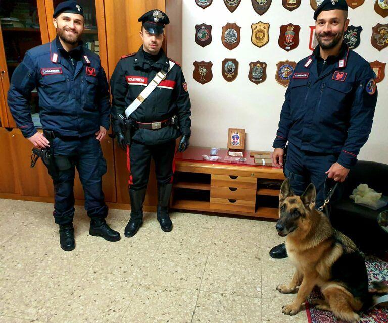 Giulianova, blitz dei carabinieri alla Rocca: sequestrato oltre un kg di droga grazie al cane Sissy FOTO