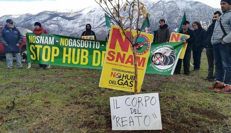 Albero di mele vietato a Case Pente: sit-in di protesta