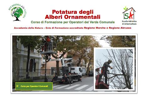 Pineto: corso sulla potatura degli alberi ornamentali rivolto ai dipendenti comunali