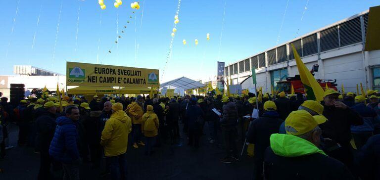 Cimice killer che arriva dall'Asia: agricoltori abruzzesi si mobilitano a Verona