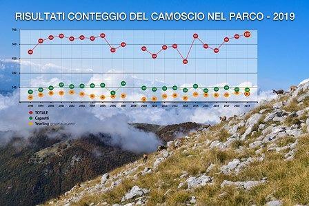 Parco Nazionale, presenti 657 camosci: il numero più alto dal 1998