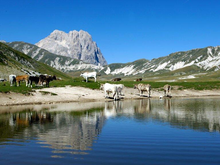 Acqua Gran Sasso, gli ambientalisti in Commissione Ambiente della Camera