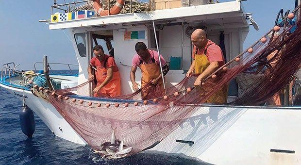 Scontrini elettronici: quale futuro per gli operatori di piccola pesca?