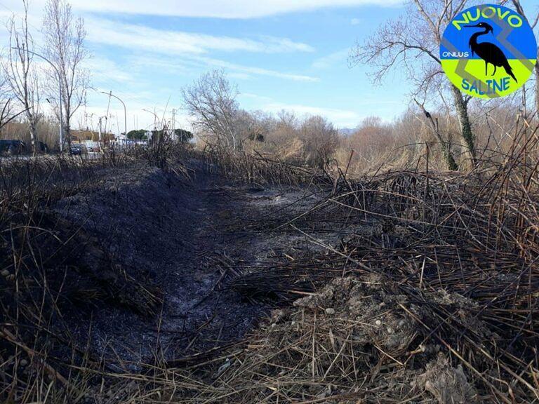 Montesilvano, incendio sul lungofiume: i pompieri salvano la condotta del metano FOTO