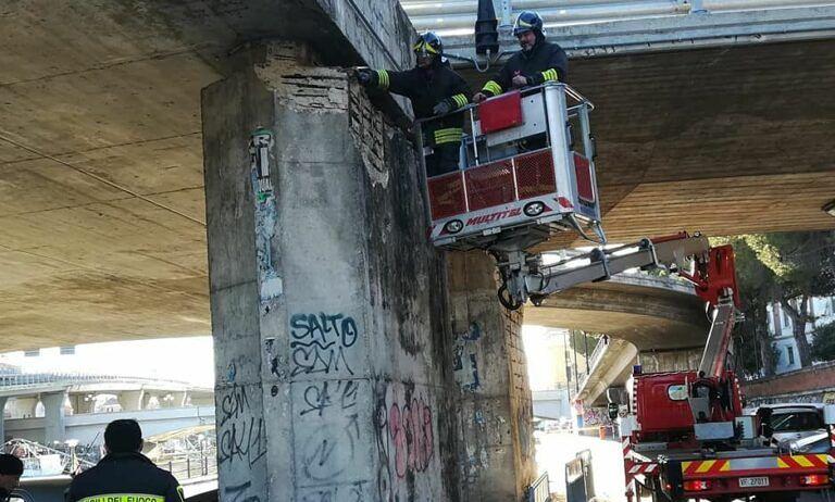 Pescara, cadono calcinacci dall'Asse Attrezzato: intervengono i vigili del fuoco