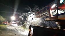 Vento forte in provincia di Teramo, decine di interventi dei vigili del fuoco FOTO VIDEO