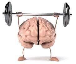 Praticare attività fisica giornaliera è una delle migliori abitudini per la salute. Scopri di più con la palestra JOY FITNESS