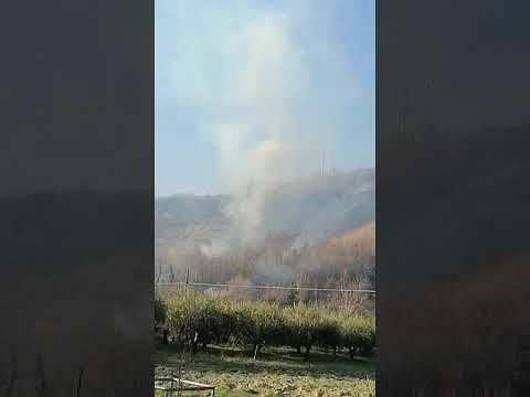 Domenica di incendi a Castilenti (due), Molviano di Campli e Paolantonio FOTO VIDEO