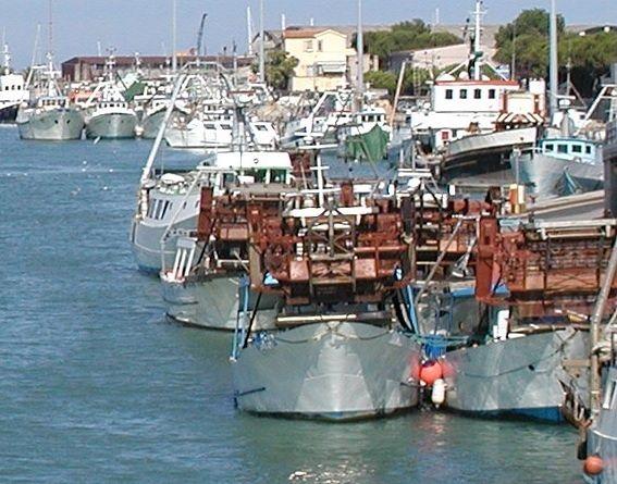 Pescara, la pesca bloccata dal Coronavirus: la marineria in ginocchio e senza rimborsi da 2 anni