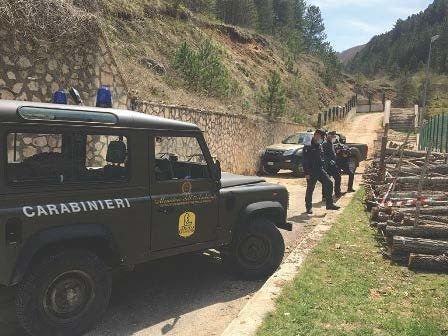 Bisegna, furti di legname nell'area del Parco Nazionale FOTO
