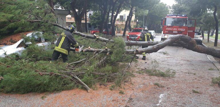 Giulianova, pino cade su un'auto: tragedia sfiorata FOTO VIDEO