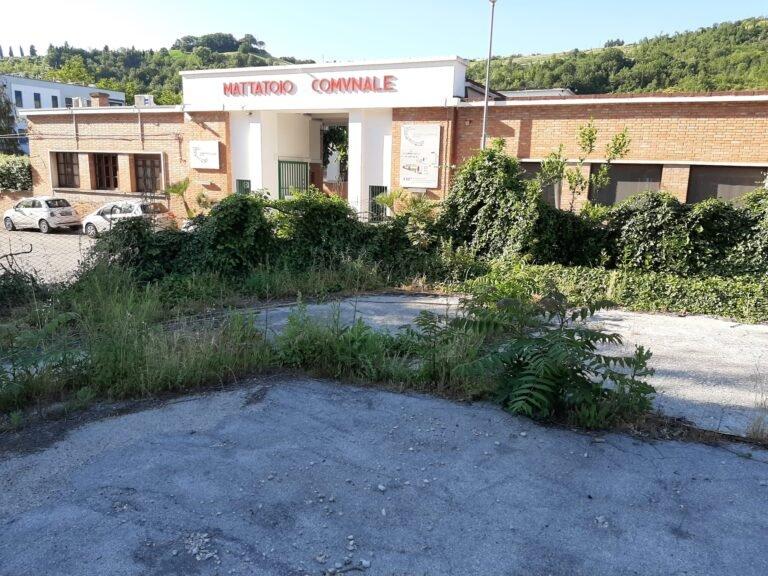 Teramo, la zona dell'ex mercato di Campo Boario sarà riqualificata