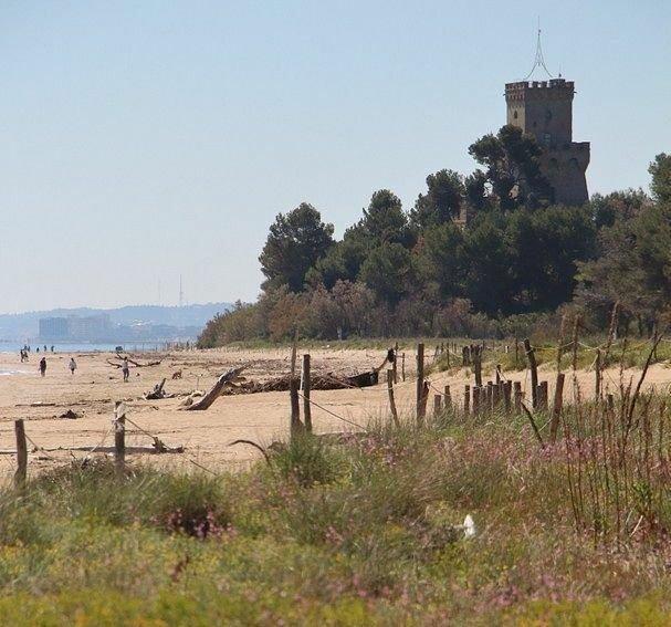 Salvaguardia ecosistemi costieri: chiudere al turismo di massa alcune zone dell'Amp Torre di Cerrano