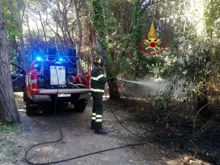 Pescara, a fuoco la pineta della Riserva Dannunziana-VIDEO