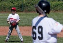 baseball teramo