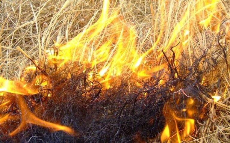 Si rompe la gamba durante un incendio: giovane pescarese morto a Enna