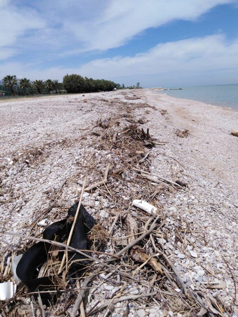 Pineto, spiagge libere ancora all'abbandono: la denuncia di Fratelli d'Italia