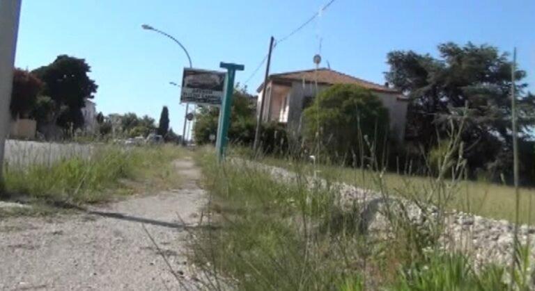 Cologna, marciapiedi della Statale impraticabili per l'erba alta. Critiche all'assessore Petrini NOSTRO SERVIZIO
