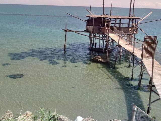 Fossacesia Marina, riapre l'ufficio turistico
