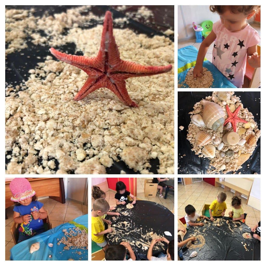 Il centro estivo dell'Asilo nido Sirena: un luogo sicuro e divertente per i bambini!