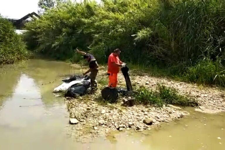 Silvi, individuato chi ha inquinato il torrente Cerrano