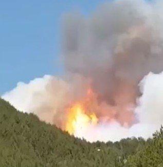 L'Aquila, vasto incendio tra Arischia e Pizzoli
