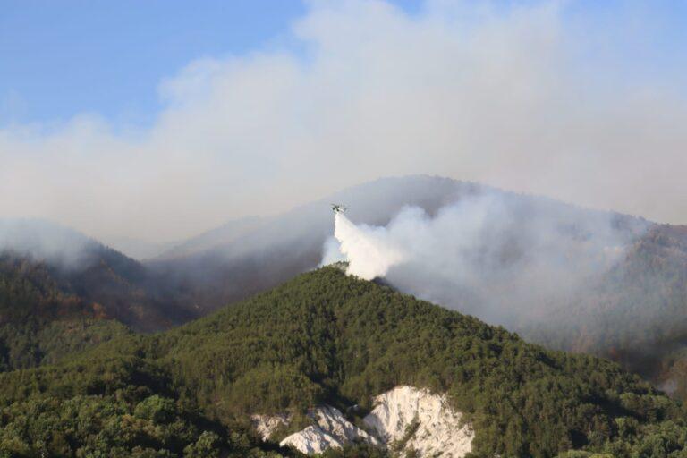 L'Aquila, altro incendio nel bosco di Cansatessa FOTO
