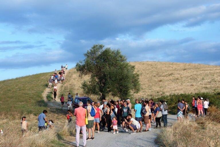 Roseto, nuova escursione alla Riserva Borsacchio alla scoperta degli ulivi più antichi