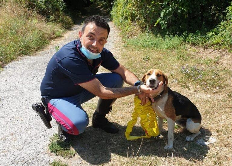 Pettorano, poliziotti mettono in salvo un cagnolino