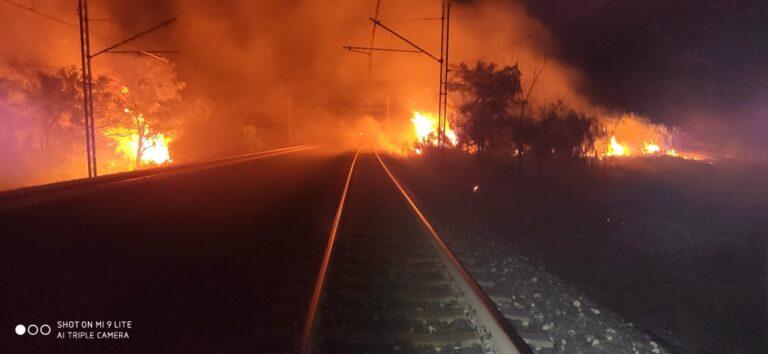 Incendi nella notte nel Vastese: interrotta anche la circolazione dei treni