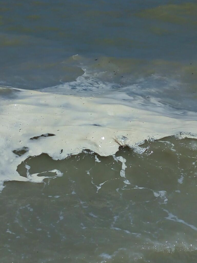 Pineto, sabbia sporca e maleodorante dopo il ripascimento FOTO