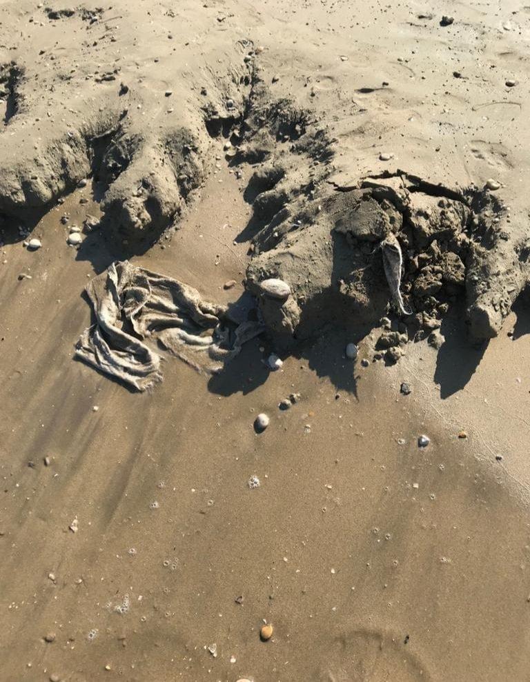 Sabbia maleodorante a Pineto nord: la replica a Fratelli d'Italia