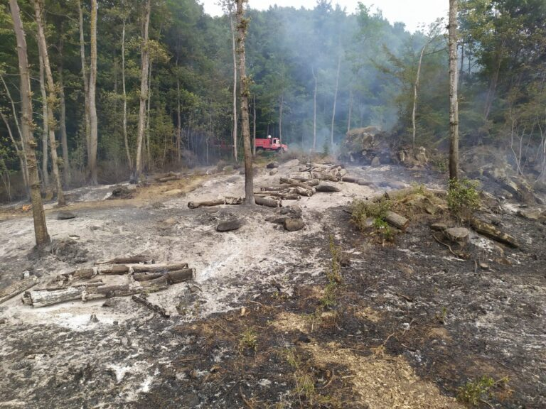 Montorio, incendio nel bosco di Altavilla