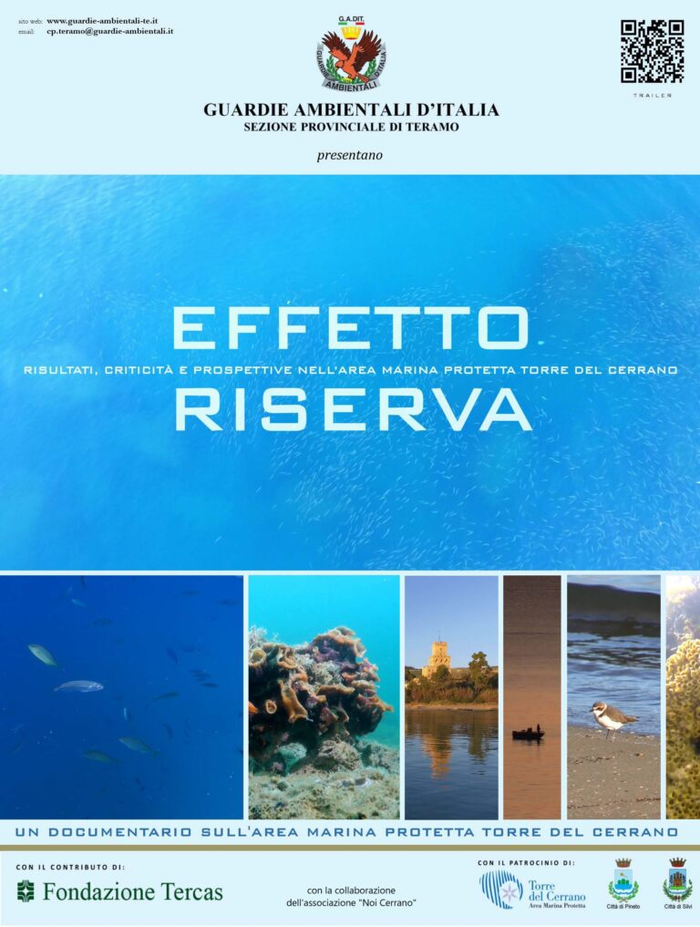 Teramo, il corto sull'Amp Torre di Cerrano selezionato dal Nature Film Festival ungherese VIDEO