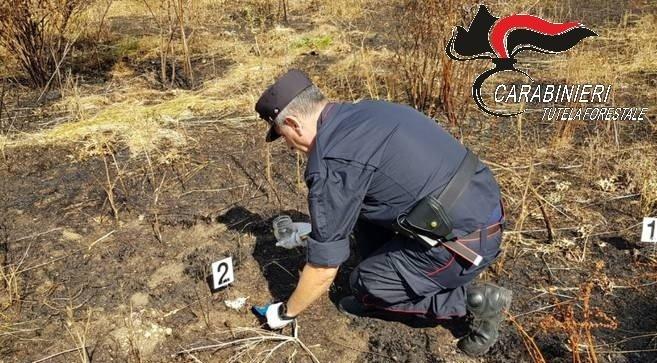 Incendio boschivo: denunciate 11 persone. Carabinieri Forestali intensificano i controlli