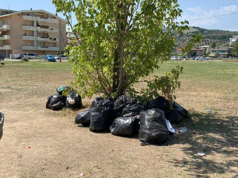 Erba alta, potature e rifiuti abbandonati: la Poliservice replica alle accuse e fa chiarezza sulle reali competenze