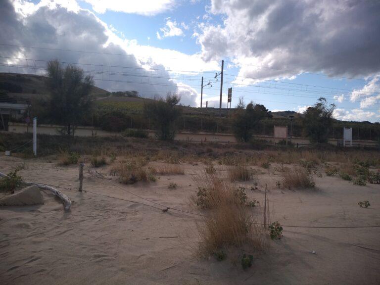 Pineto, aumentata la zona dunale dell'Amp Torre di Cerrano: maggiore difesa dall'erosione