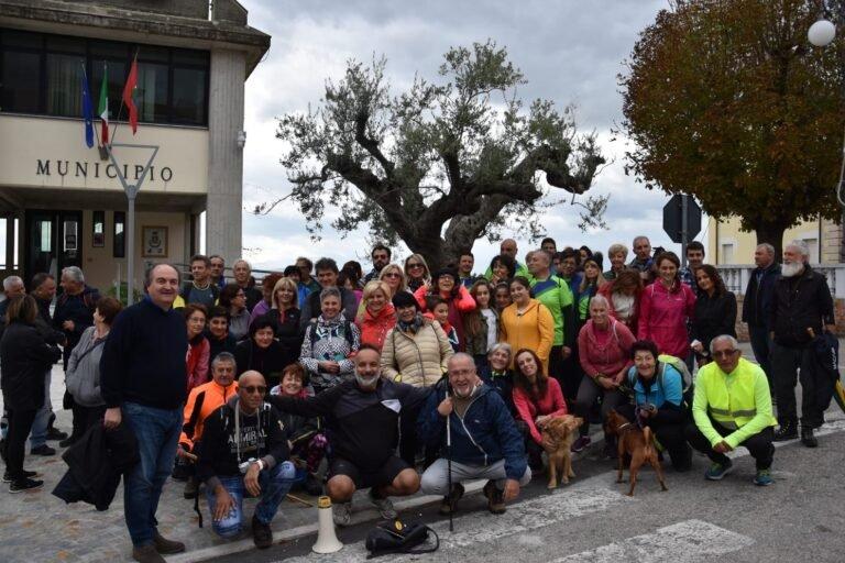 """Emergenza Covid: Controguerra e Sant'Omero rinunciano alla """"camminata tra gli olivi"""""""